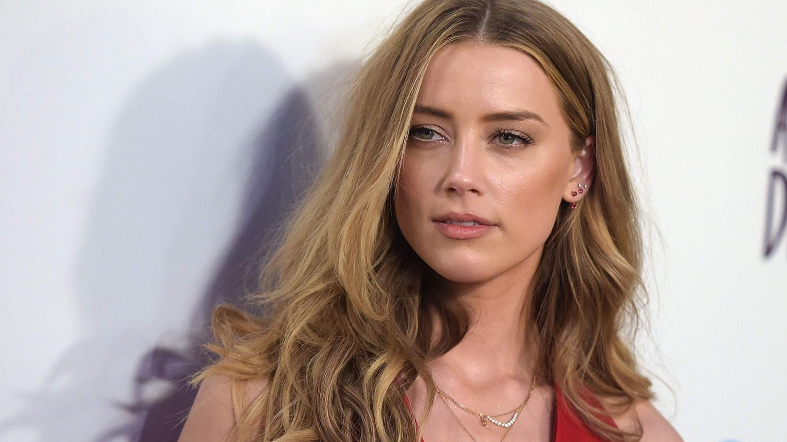 Petition To Remove Amber Heard From Aquaman 2, Currently ...